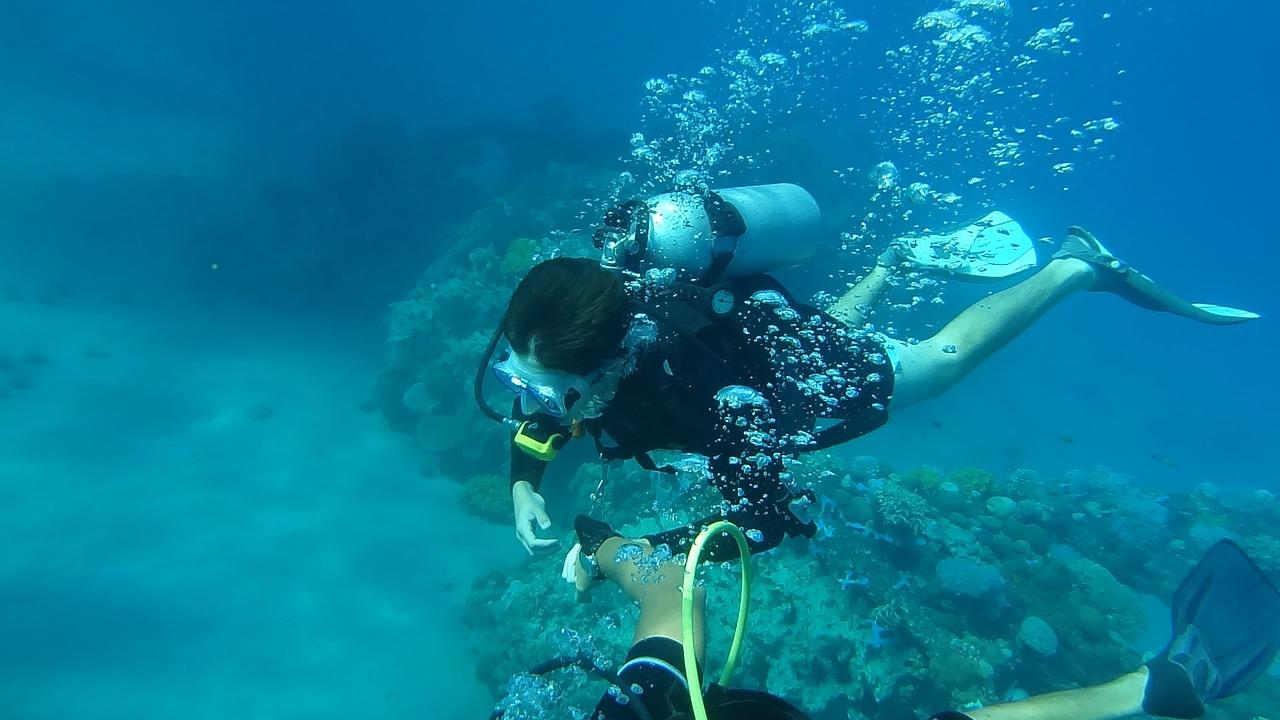 צלילה בלב ים