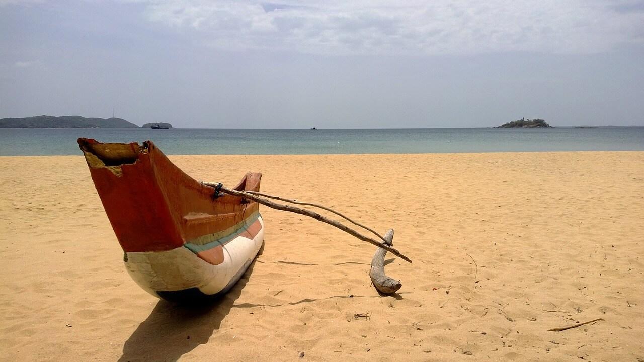 יעדים טרופיים בחול